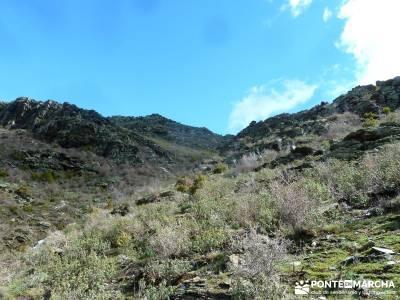 Sierra Alto Rey - Peña Mediodía; rutas senderismo cerca de madrid; rutas trekking madrid;puente se